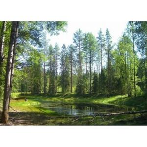 """""""Год особо охраняемых природных зон"""" позволит привлечь внимание общества к вопросам экологии"""