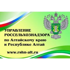 О работе отдела пограничного ветеринарного контроля на Государственной границе РФ и транспорте