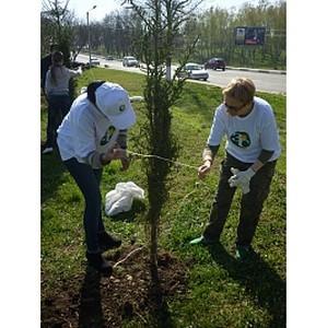 В городе Абинске прошло мероприятие по озеленению в рамках проекта «Вырасти свою Россию!»