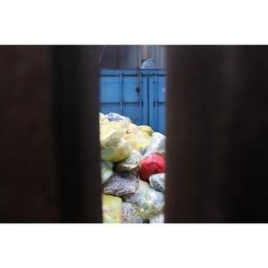 После вмешательства ОНФ надзорные органы проверили объект по утилизации опасного мусора в Кургане
