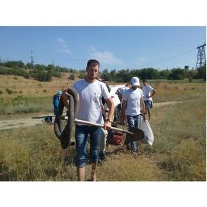Волгоградские активисты ОНФ подключились к экологической акции по сохранению парка «Счастье»