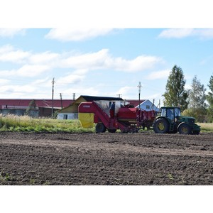 Костромской филиал РСХБ в 2017 году направил на развитие АПК региона 200 млн рублей