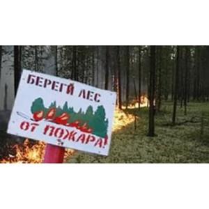 ОНФ проведет в Мордовии мониторинг готовности муниципалитетов к пожароопасному периоду