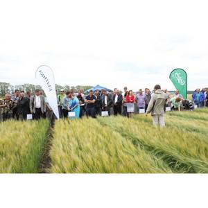 «Балтика» отметила юбилей агропроекта на Дне поля