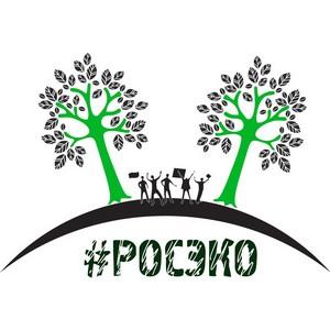 Проект #РосЭко создал наглядное пособие по законодательству в области экологических прав граждан