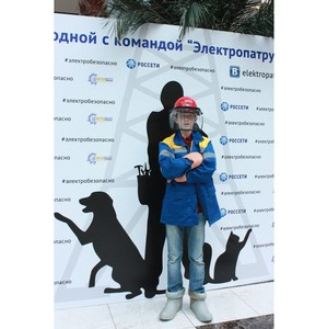 Энергетики МРСК Центра и Приволжья провели праздник электробезопасности с командой «Электропатруль»