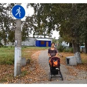 В Алтайском крае реализуются предложения ОНФ по обустройству пришкольных пешеходных переходов