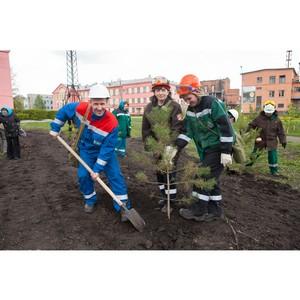 Кемеровский «Азот» вносит вклад в сохранение лесов