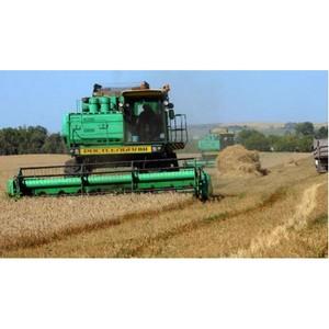 Намолочен первый миллион тонн озимой пшеницы