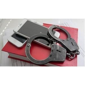 Полицейские задержали подозреваемого в краже мобильного телефона