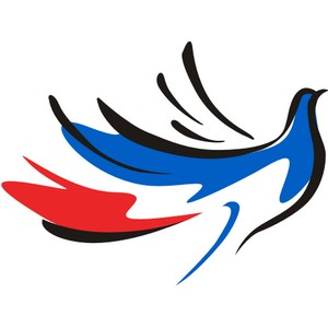Всероссийский молодежный форум волонтерского движения «Под флагом Доброй Воли!»