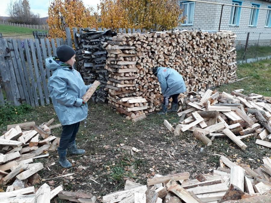 Команда «Молодежки ОНФ» помогла пожилой пенсионерке из Мордовии сложить дрова