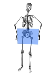 Сканирование снимков МРТ и рентгеновских снимков