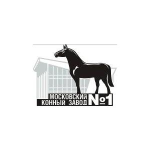 На Московском конном заводе №1 прошёл Личный Чемпионат России по выездке