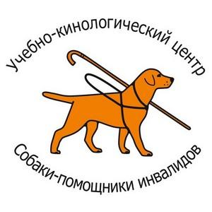 Центру по подготовке собак-поводырей нужна Ваша помощь!