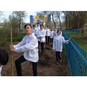 Строительный отряд «Эйдос» Рубцовского института (филиала) АлтГУ в действии
