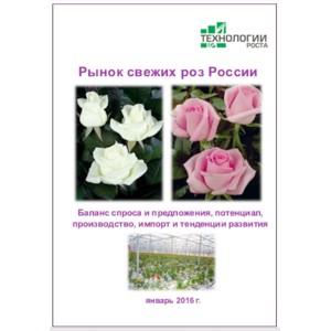 Рынок свежих роз России  - 2016