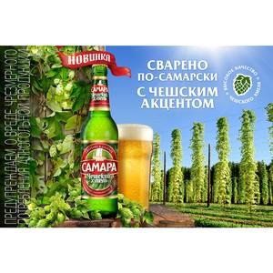 Самарские пивовары представляют новый сорт - «Самара Чешский хмель»