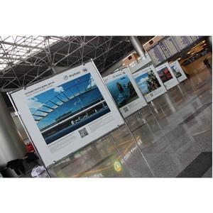 Во «Внуково» открылась новая выставка из серии «Путешествуйте дома»