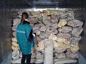 Более 15 тонн свежемороженой рыбы изъяли из оборота инспекторы Управления Россельхознадзора по НСО.