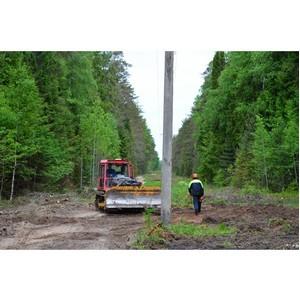 Филиал «Костромаэнерго» продолжает выполнять комплекс природоохранных мероприятий