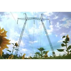 ФСК ЕЭС выполнит техприсоединение круглогодичных агрокомплексов более чем на 200 МВт