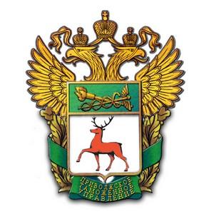 На таможенном посту Аэропорт Казань задержан глотатель героина
