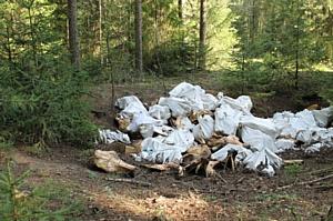 Кировские активисты ОНФ обнаружили крупную свалку в Малой Субботихе