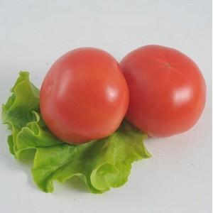 Возвращение турецких томатов на российский рынок - условия