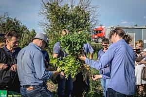 Россия начала подготовку специалистов по крупномасштабному органическому земледелию