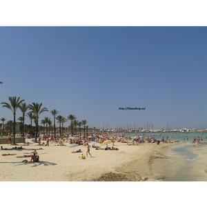 Ареналь, Магулуф, Пальма Нова? Какой курорт Испании выбрать? Об отдыхе на Майорке