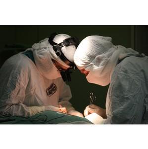 """Нейрохирурги Травмбольницы Сургута выступят на конференции """"Вопросы ведения ишемического инсульта"""""""