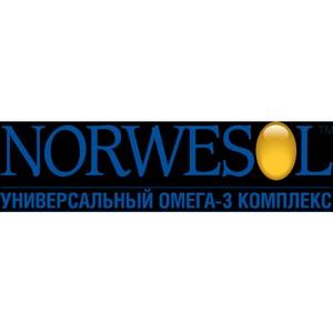 В Санкт-Петербурге пройдёт российско-норвежская научная конференция