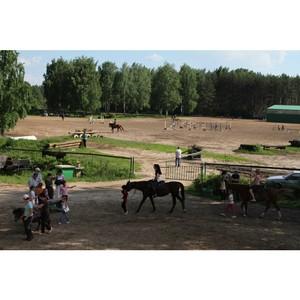 О нарушения ветеринарно-санитарных правил при содержании лошадей