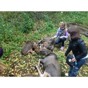 Cпециалисты Группы Компаний «Метро» посетили Сумароковскую Лосиную ферму под Костромой.