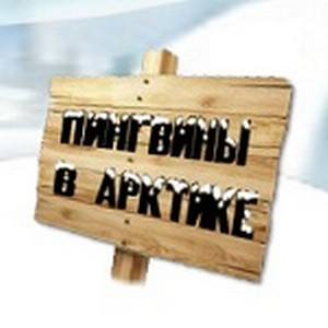 «Пингвины в Арктике» меняют профессию