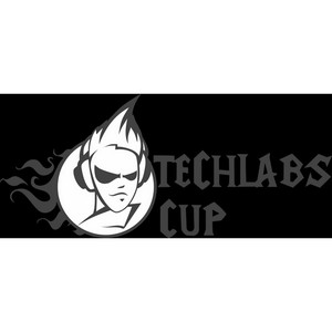 TECHLABS CUP UA 2012.