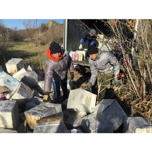 Активисты ОНФ в Волгоградской области очистили от химикатов территорию поймы реки Царица