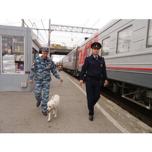 В Волгоградском ЛУ МВД России на транспорте прошла акция «Осторожно, мошенники!».