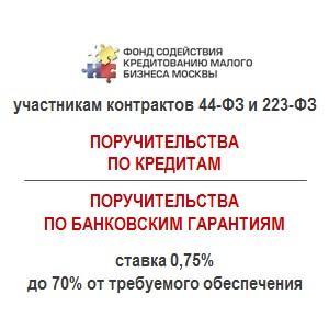 Около 3 млрд руб получили МСП благодаря Москве гарант фонду в 1 полугодии 2016 г