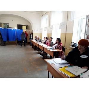 Более 100 общественных наблюдателей работало на выборах Президента РФ на Дону