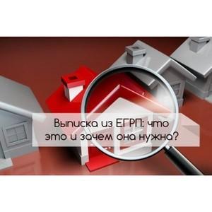 Зачем нужна выписка ЕГРП?