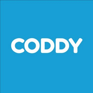 Школа программирования CODDY запустила версию сайта для слабовидящих людей
