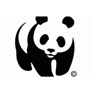 В День экодолга WWF и бизнес обсудили лучшие «зеленые» практики