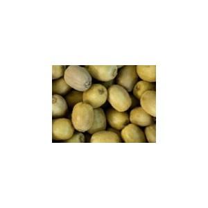 О выявлении щитовки на плодах киви