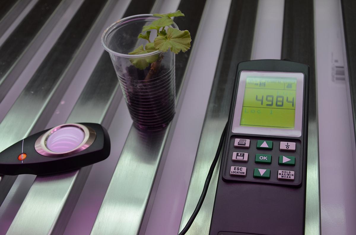 Фитостеллажи АВТех для роста растений. Теперь для заказа доступна модель высотой 1910 мм.