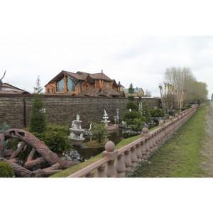 Активисты ОНФ взяли на контроль ситуацию с вырубкой деревьев на территории бывшего поселка Березняки