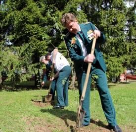 Московская областная таможня приняла участие  в акции «Дерево Победы»