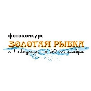 Конкурс «Золотая рыбка»