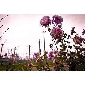 ФСК ЕЭС повышает надежность электроснабжения потребителей Республики Дагестан